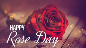 happy rose day 2019 images
