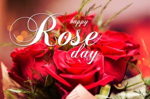 happy rose day 2019 messages